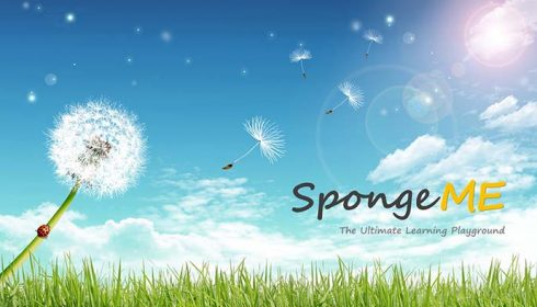 Primary English Tuition Singapore Sponge ME
